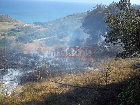 Η Εθελοντική Ομάδα Δασοπροστασίας Ελειού – Πρόννων για την δράση της στις πυρκαγιές