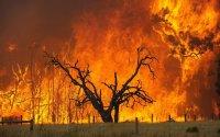 Οι πυρκαγιές επηρέασαν το κλίμα περισσότερο από ό,τι η πανδημία